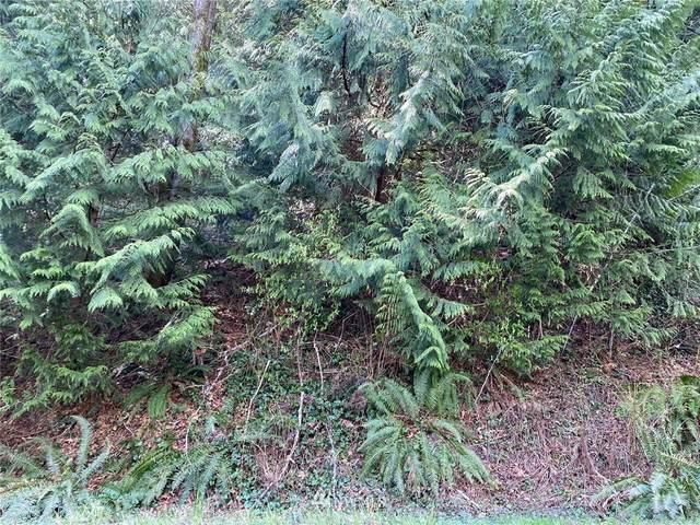 0 Peak Drive, Sedro Woolley, WA 98284 (#1751490) :: Keller Williams Western Realty
