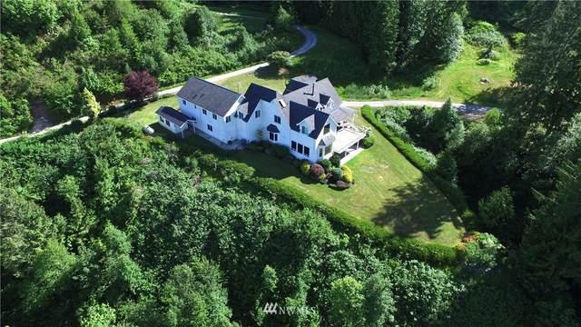 18579 W Lakeview Lane, Mount Vernon, WA 98274 (#1751962) :: Provost Team | Coldwell Banker Walla Walla