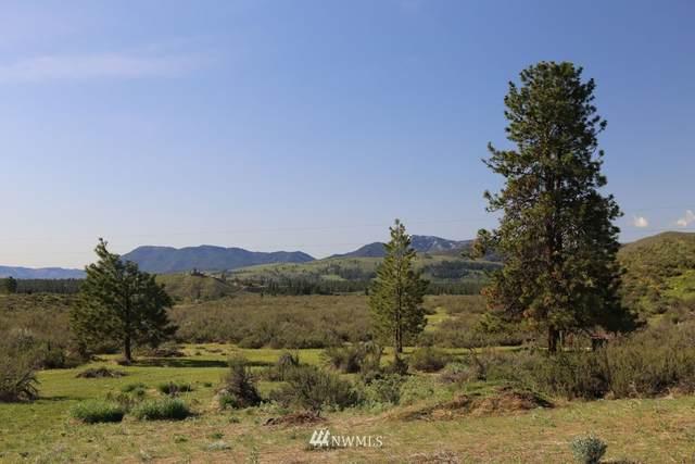 0 West Chewuch Road N, Winthrop, WA 98862 (#1752263) :: Keller Williams Western Realty