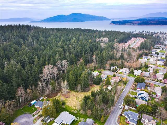 0 B Avenue, Anacortes, WA 98221 (#1752318) :: Ben Kinney Real Estate Team