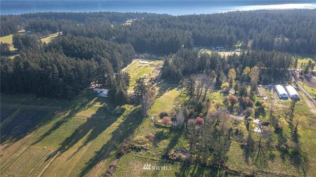 382 Dolphin Bay Road, Orcas Island, WA 98245 (#1752451) :: Better Properties Lacey