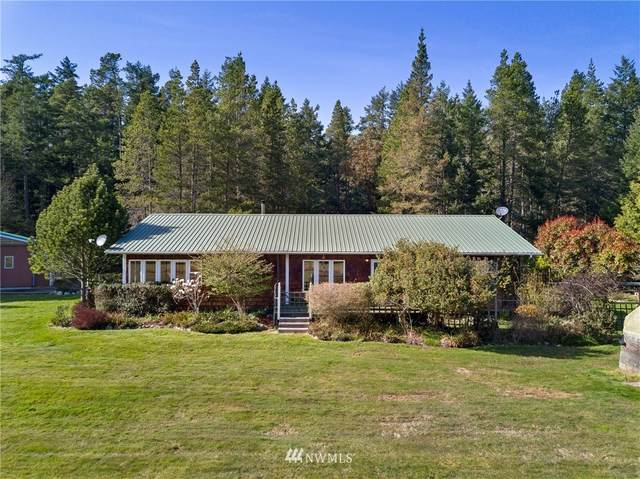 649 Tarte Road, Friday Harbor, WA 98250 (#1753047) :: NW Home Experts