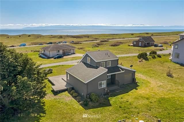 300 Lighthouse Lane, Friday Harbor, WA 98250 (#1753189) :: M4 Real Estate Group