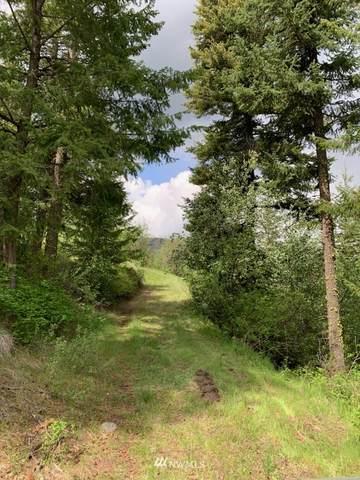 6 Whiskey Mountain Ranches, Tonasket, WA 98855 (#1753284) :: Northwest Home Team Realty, LLC