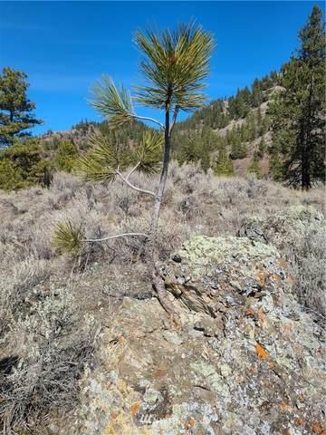 8 Whiskey Mountain Ranches, Tonasket, WA 98855 (#1753302) :: Northwest Home Team Realty, LLC