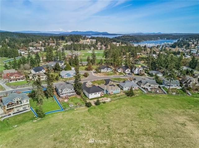 519 Kelsando Circle, San Juan Island, WA 98250 (MLS #1753409) :: Community Real Estate Group