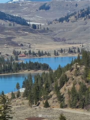 13 Whiskey Mountain Ranches, Tonasket, WA 98855 (#1753521) :: Northwest Home Team Realty, LLC