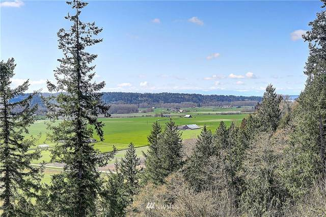 2330 NW 254th Street NW, Stanwood, WA 98292 (#1753601) :: Better Properties Real Estate