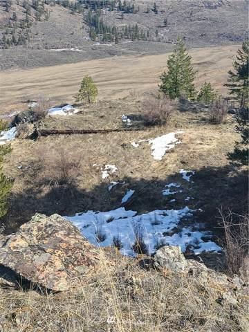 15 Whiskey Mountain Ranches, Tonasket, WA 98855 (#1753683) :: NextHome South Sound