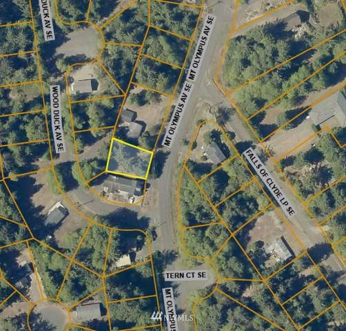 741 Mt Olympus Avenue SE, Ocean Shores, WA 98569 (#1753689) :: Ben Kinney Real Estate Team