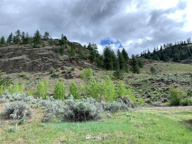 27 Whiskey Mountain Ranches, Tonasket, WA 98855 (#1753723) :: NextHome South Sound