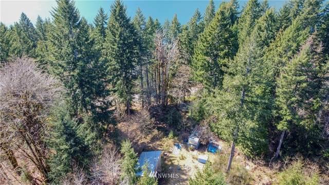 4912 N Lake Cushman Road, Hoodsport, WA 98548 (#1753744) :: M4 Real Estate Group