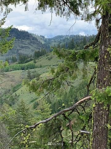 29 Whiskey Mountain Ranches, Tonasket, WA 98855 (#1753757) :: Northwest Home Team Realty, LLC