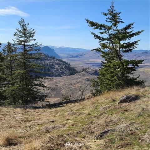 30 Whiskey Mountain Ranches, Tonasket, WA 98855 (#1753773) :: Northwest Home Team Realty, LLC