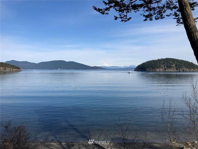 0 Thatcher Pass Rd-The Hermitage, Decatur Island, WA 98221 (#1754050) :: Ben Kinney Real Estate Team
