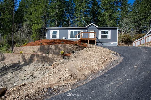141 NE Larson Lake Lane, Belfair, WA 98528 (#1754613) :: Urban Seattle Broker