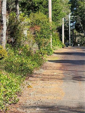 0 R Street, Ocean Park, WA 98640 (MLS #1754699) :: Brantley Christianson Real Estate
