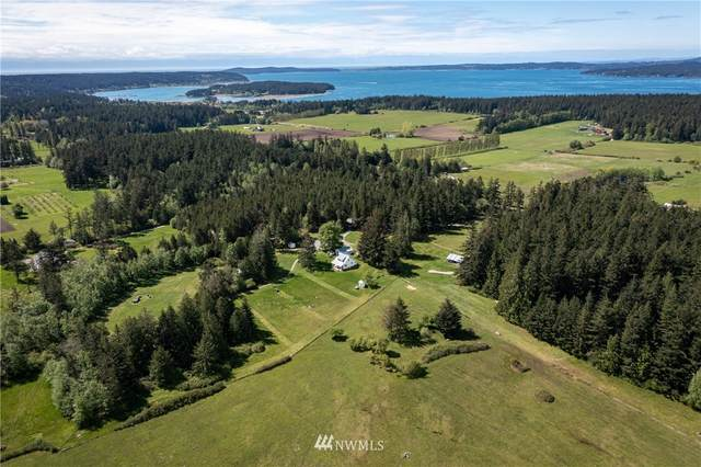 607 Fisherman Bay Road, Lopez Island, WA 98261 (#1754767) :: Engel & Völkers Federal Way