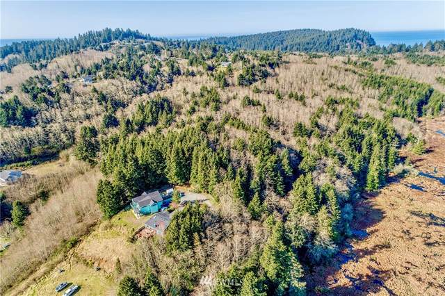 500 SW Main St, Ilwaco, WA 98624 (#1755296) :: Shook Home Group