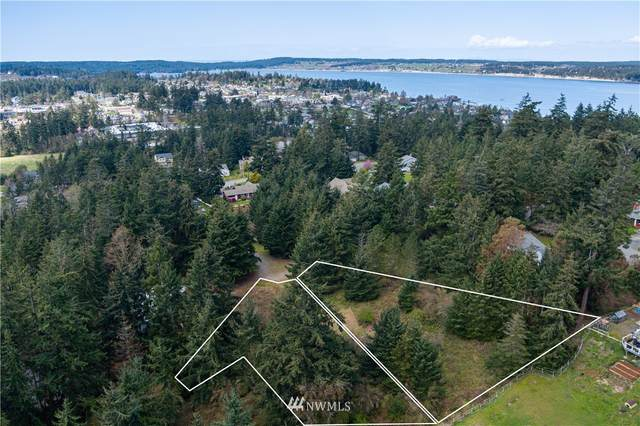 0 Circle Drive, Coupeville, WA 98239 (#1755303) :: Shook Home Group