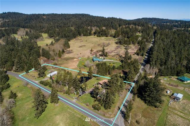 49 Egg Lake Road, Friday Harbor, WA 98250 (MLS #1755435) :: Community Real Estate Group