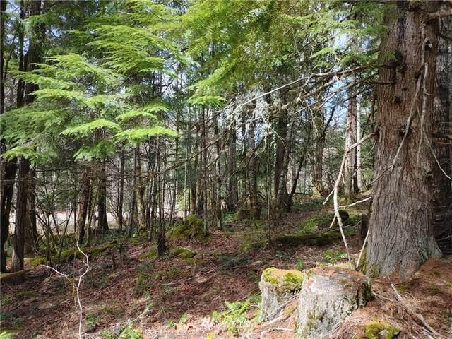 0 Marmot Loop, Packwood, WA 98361 (#1755519) :: Ben Kinney Real Estate Team