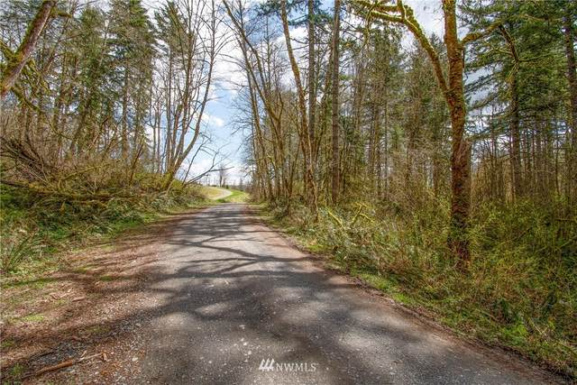 0 NE Fargher Drive, Yacolt, WA 98675 (#1755618) :: Ben Kinney Real Estate Team