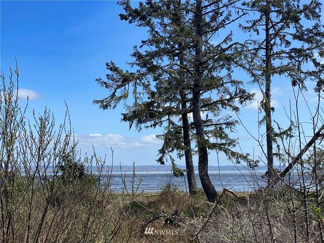 760 Duck Lake Drive NE, Ocean Shores, WA 98569 (#1755631) :: Ben Kinney Real Estate Team