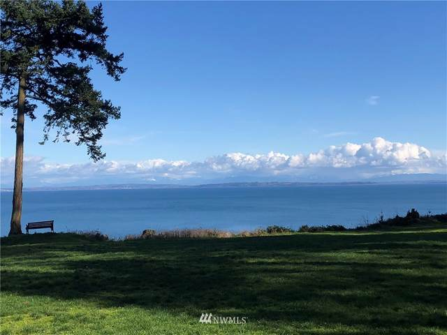 412 High Bluff Drive, Point Roberts, WA 98281 (#1755715) :: Ben Kinney Real Estate Team