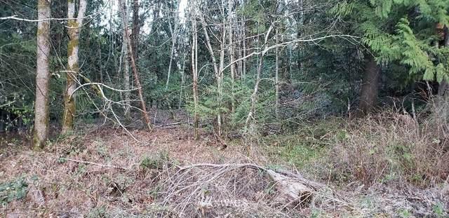 460 E Dartmoor Drive, Shelton, WA 98584 (#1755835) :: Costello Team