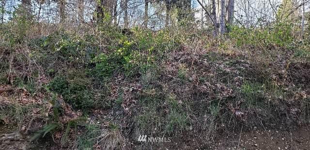 2031 SE Spring Road, Shelton, WA 98584 (#1755895) :: Ben Kinney Real Estate Team