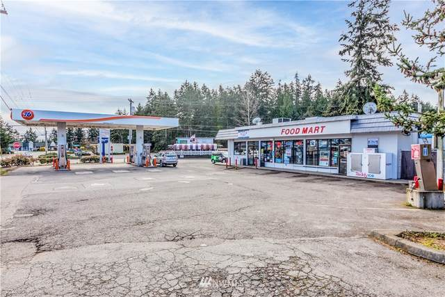 1100 Ness Corner Road, Port Hadlock, WA 98339 (#1755920) :: Northern Key Team
