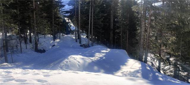 0 Snoqualmie Village Drive, Snoqualmie Pass, WA 98068 (#1756094) :: The Snow Group