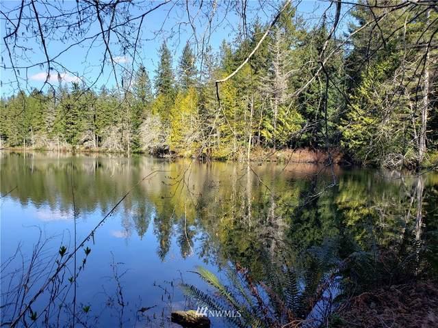 20 W Lake Ludvick, Seabeck, WA 98380 (#1756272) :: Keller Williams Realty