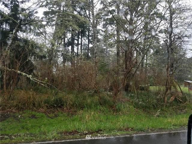 693 Duck Lake Drive NE, Ocean Shores, WA 98569 (#1756497) :: Ben Kinney Real Estate Team