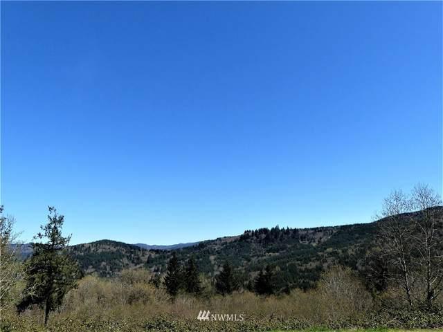 300 Horizon Drive, Kalama, WA 98625 (#1756720) :: Ben Kinney Real Estate Team