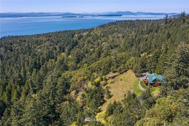 164 Mount Dallas Road, Friday Harbor, WA 98250 (#1756777) :: Better Homes and Gardens Real Estate McKenzie Group