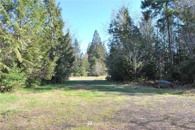 45 N Suncrest Drive, Hoodsport, WA 98548 (#1756799) :: The Original Penny Team