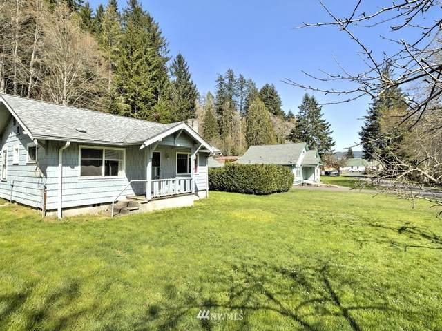 180 N Finch Creek Road, Hoodsport, WA 98548 (#1756986) :: Ben Kinney Real Estate Team