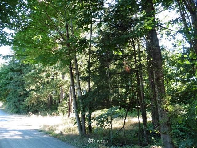 27226 207th Avenue SE, Maple Valley, WA 98038 (#1757202) :: Ben Kinney Real Estate Team