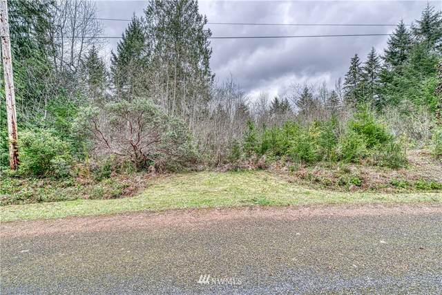 53 E Budd Drive, Shelton, WA 98584 (#1757744) :: Northwest Home Team Realty, LLC