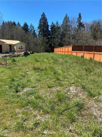 295 Parkside Loop, Napavine, WA 98532 (#1757862) :: Shook Home Group