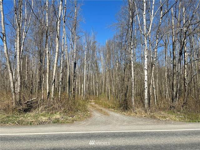 0 Birch Bay Lynden Road, Custer, WA 98240 (MLS #1758090) :: Community Real Estate Group