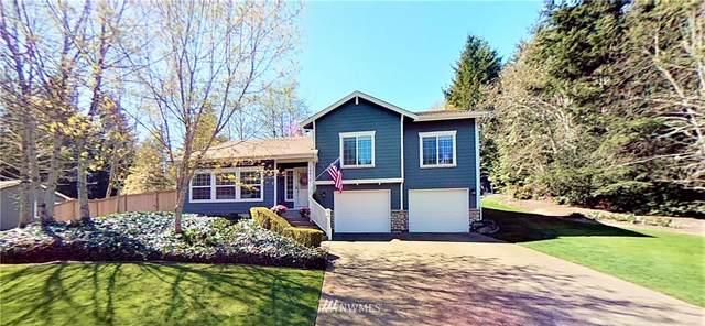 14810 46th Avenue Ct NW, Gig Harbor, WA 98332 (#1758189) :: Better Properties Real Estate