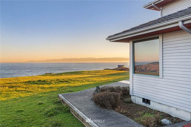 449 Eagle Cove Drive, Friday Harbor, WA 98250 (#1758375) :: The Kendra Todd Group at Keller Williams