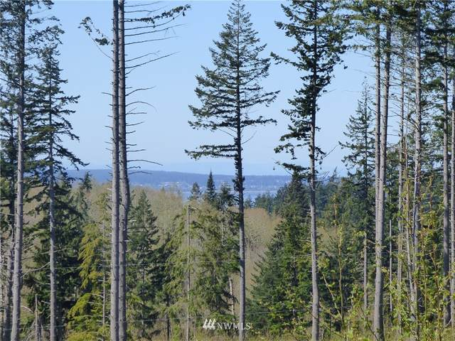 0 Camano Ridge Road, Camano Island, WA 98282 (#1758378) :: Icon Real Estate Group