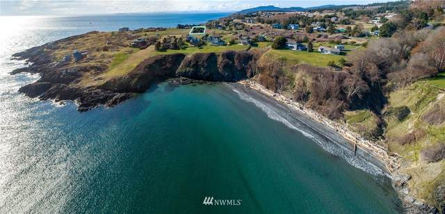 1 Eagle Cove Div 1 Drive, Friday Harbor, WA 98250 (#1758562) :: Provost Team | Coldwell Banker Walla Walla