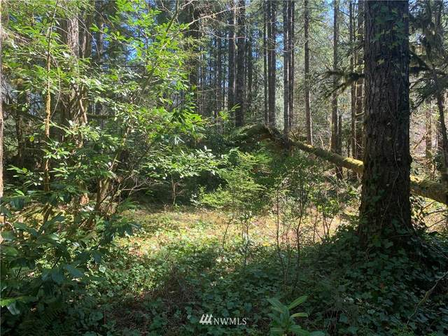 52004 Skyko Drive, Index, WA 98256 (#1758668) :: Keller Williams Western Realty