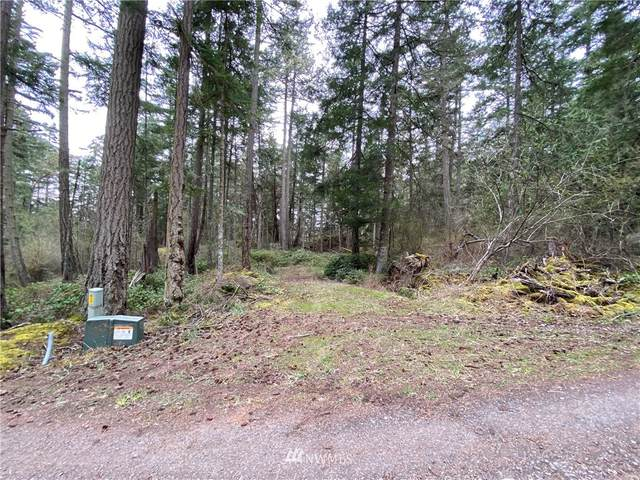 0 Hyak Lane, San Juan Island, WA 98250 (#1758795) :: Better Properties Real Estate