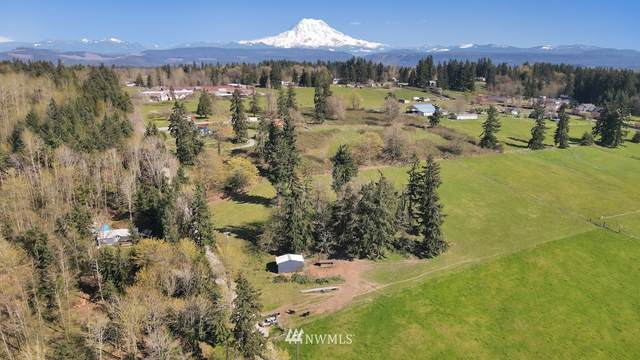10906 234th Street E, Graham, WA 98338 (#1758877) :: Keller Williams Realty